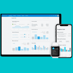 Xero Accounting Software Guide for Small Businesses